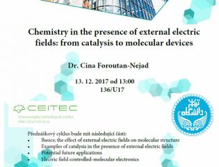 Chemistry in the presence of external electric fields: from catalysis to molecular devices